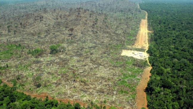 Human activity that damages nature affected 97 percent of the areas of the world defined as having high ecological