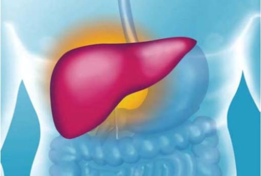 передний гепатит и рак одно и тоже личного транспорта, Выборг
